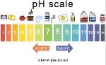 500x350_phscale_3-2