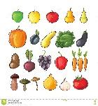 frutta-e-verdure-di-autunno-illustrazione-piana-di-vettore-76778464