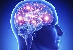 Que-sucede-en-el-cerebro