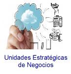 unidades-estrategicas-de-negocios