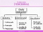 organograma-estrutura-Funcional