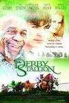 derby stallon