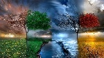 Nature___Seasons_All_seasons_in_one_picture_098064_ (1)