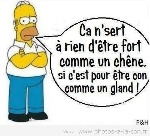 image-drole-simpsons