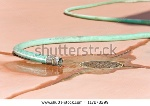 stock-photo-leaking-backyard-garden-hose-concept-of-wasting-water-shown-by-water-flowing-from-a-long-green-117278299