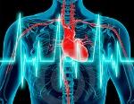 electrofisiologia_articulo_principal