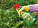 Superfast_Long_Lasting_Weedkiller_anw
