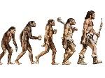 evoluxcion
