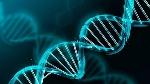 manipulacion-genetica-consiste-adn-620x349