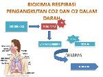 biokimia-respirasi-lidya-1-638