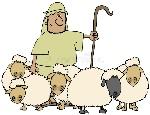 sheep-shepherd-6194831