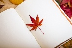 maple-leaf-638022_960_720