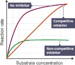 competitive and non competitive inhibitor