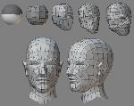 3-head