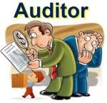 Auditor-auditoria-300x291