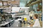 investigascion_cientifica(r)