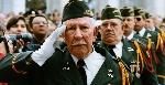 veterans-day-at-arlington-national-cemetary-P