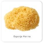 1-esponja-marina