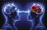 cerebros-conectados
