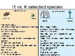R+vs.+K+selected+species