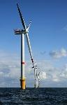 320px-Windmills_D1-D4_(Thornton_Bank)
