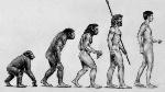 Darwin-evolucion-interior (1)