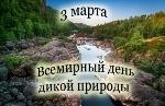 dikaya_priroda_01