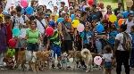 MARCHA-ANIMALES-VENEZUELA_Octubre_2016_800x445