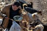 este-hombre-empleo-toda-su-fortuna-en-la-creacion-de-un-centro-para-perros-callejeros-1474827754