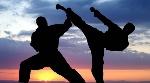 karate-