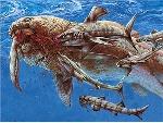 devonian placoderm vs sharks