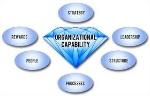 capacidade da organização