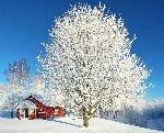 Inverno-