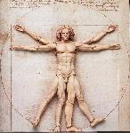 hombre-de-vitruvio-tridimensional