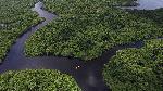floresta-amazonica-343759751
