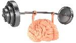 8138091-hjernestyrke