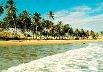 clima-tropical-tipos-e-no-brasil