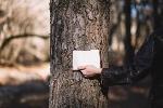persona-de-cultivo-con-cuaderno-cerca-de-arbol_23-2147770518