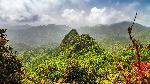 el-yunque-un-bosque-tropical-en-puerto-rico