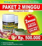 ambejos-paket-2-minggu-rp-500rb-275x300